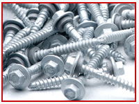 ASTM F593 Tamper Resistant screws