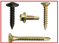 ASTM F593 Tapping Screws
